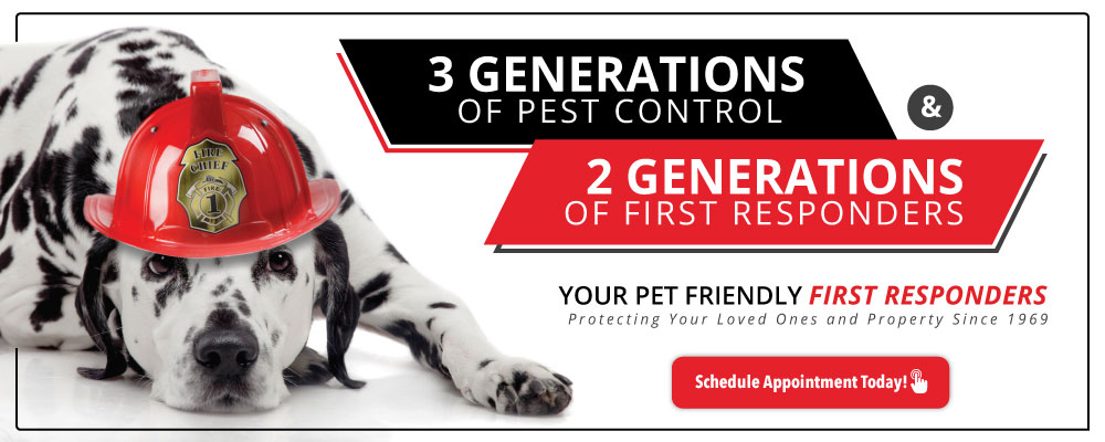 three generations of pest control